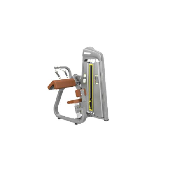 دستگاه جلو بازو و پشت بازو لاری 2کاره پریکور Precor